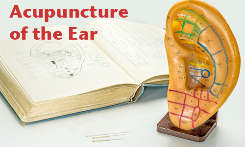 Acupuncture needles, text book and plastic ear