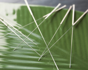 acupuncture needles on a green leaf